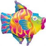 Tropical Fun Fish
